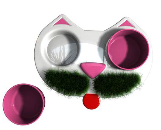 herbcat3